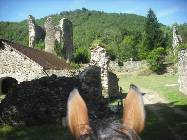 Les Ruines de la Chartreuse à Cheval